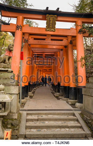 Teenage boys walking beneath the Senbon Torii painted in a vermilion red-orange color that is associated with the soul of Inari Okami and blessings fo - Stock Image