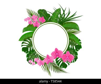Set. Green tropical leaves of banana, coconut, monstera and ogawa. Pink Orchid. In a circle place for ads, advertising. illustration - Stock Image