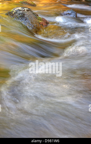 Golden evening light graces the rapids below Didsworthy on the River Avon (or Aune), in the south of Dartmoor National - Stock Image