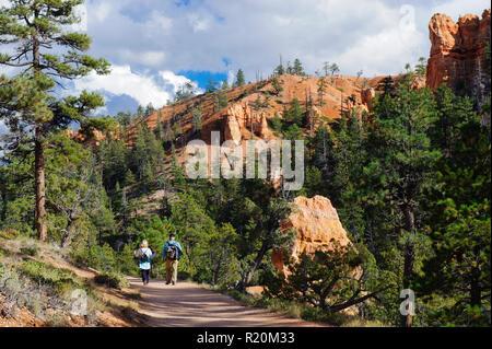 Couple hiking amongst pinetrees on the Navajo Loop Trail, Bryce Canyon National Park, Utah, USA. - Stock Image