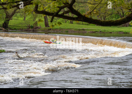 The Horseshoe falls on the river Dee at Llangollen. Kyakers, conoeists, whitewater, rapids - Stock Image