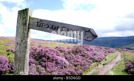 The National Trust High Peak Estate William Clough right to roam Peak District National Park Derbyshire - Stock Image