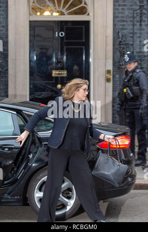 London, United Kingdom. 15 January 2019. Penny Mordaunt, Secretary of State for International Development, Minister for Women and Equalities arrives at 10 Downing Street for the weekly cabinet meeting ahead of the critical Brexit vote. Credit: Peter Manning/Alamy Live News - Stock Image