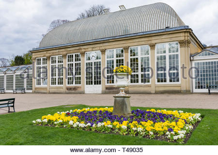 Spring flower beds in the botanical gardens in Sheffield, South Yorkshire, England, UK, one of the many green spaces in the industrial city. - Stock Image