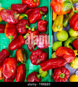Red Peppers on market stall in Spain - Stock Image