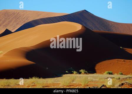 Wonderful red desert, The Namib desert - Stock Image