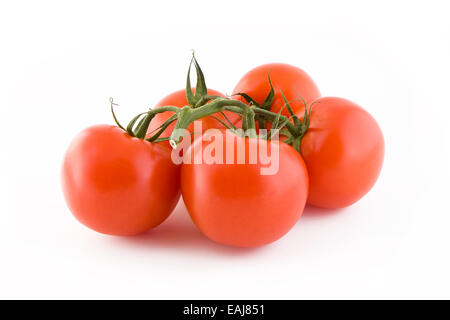 Bunch of fresh tomatoes isolated on white background, vegetables - Stock Image