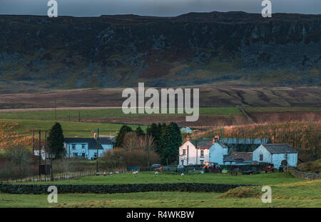 North Pennines AONB landscape, the remote farming hamlet of Langdon Beck, Upper Teesdale, UK in early morning sunlight and a dark sky background - Stock Image