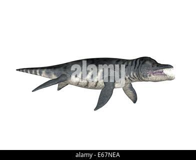 Dinosaurier Liopleurodon / dinosaur Liopleurodo - Stock Image