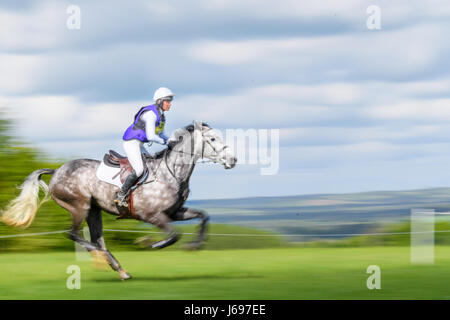 Rockingham Castle grounds, Corby, England. Saturday 20th May 2017. Georgie Strang and her horse Capels Hollow Drift - Stock Image