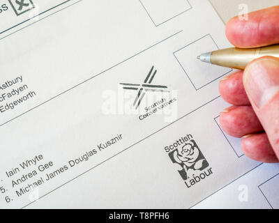 Man voting on ballot paper for  Scottish Conservative party in European Parliament election, Scotland, May 2019 - Stock Image