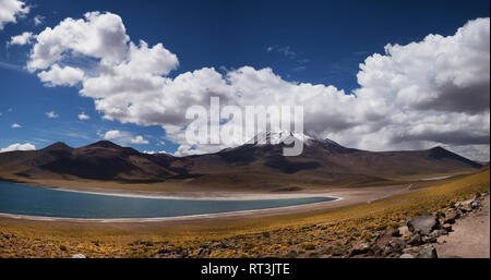 Laguna Miscanti, Southern high Altiplano, Atacama Desert, Chile, South America. - Stock Image