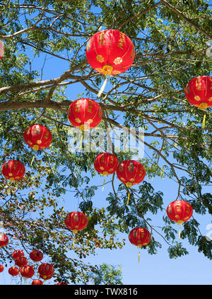 Picture presenting asian decoration hanging on branches - Stock Image