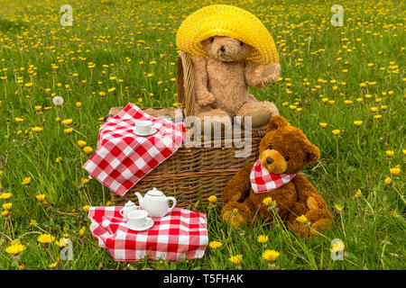 Teddy Bear's picnic with bright yellow dandelions and red gingham table cloth.  Concept: happy, outdoors, nature, children. Landscape, space for copy - Stock Image