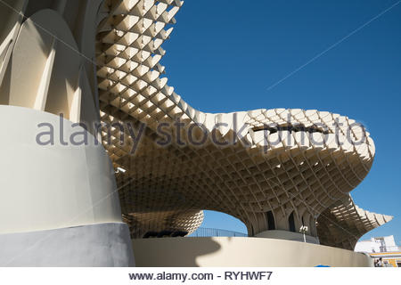 Under the Metropol Parasol Seville - Stock Image