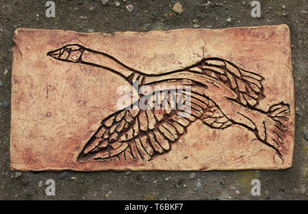 Decorative ceramic tile showing a Canada Goose at RSPB Leighton Moss Reserve, Lancashire, UK - Stock Image