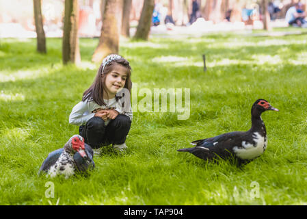 Adorable four years old cute little girl watches ducks in a green garden.Nature and kid concept - Stock Image
