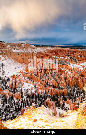 Bryce Canyon National Park, Utah, United States of America, North America - Stock Image
