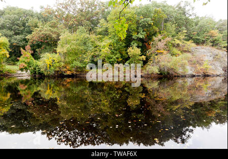 A view across the Charles River of the Hemlock Gorge Reservation, - Stock Image