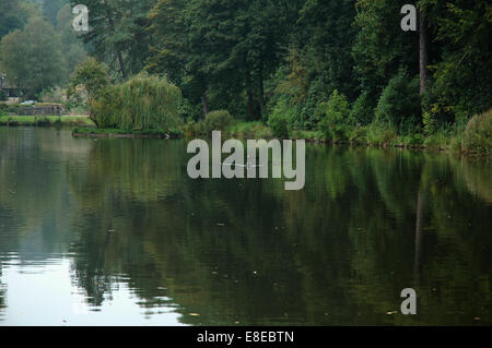 Lake at Dimmingsdale, Staffordshire - Stock Image