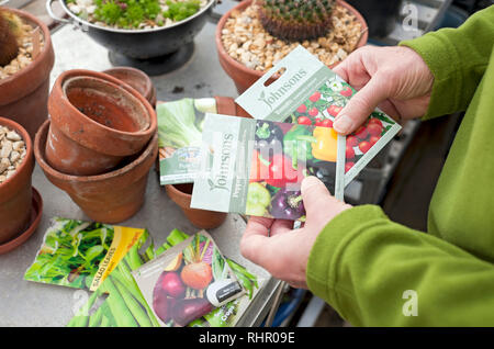 Man sorting through packets of vegetable seeds in the greenhouse England UK United Kingdom GB Great Britain - Stock Image