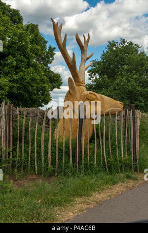 Linford, Leicestershire 21st June 2018: Blue sky's white clouds warm first day of summer as wild deer run free in the British countryside . Clifford Norton Alamy  Live News. 21st June 2018: Blue sky's white clouds warm first day of summer as wild deer run free in the British countryside wooden carving of stag's head . Clifford Norton Alamy  Live News. - Stock Image