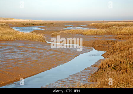 A creek in ebb tide meandering through salt marshes on the North Norfolk coast at Thornham, Norfolk, England, United Kingdom, Europe. - Stock Image