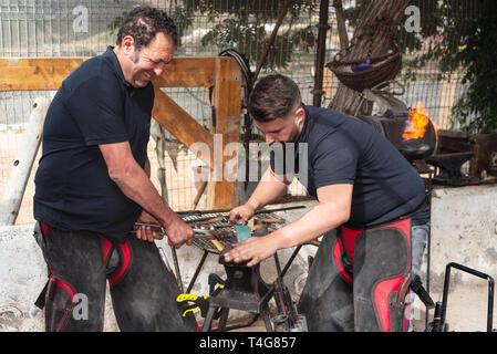 Blacksmith team working on the anvil, making a horseshoe . - Stock Image