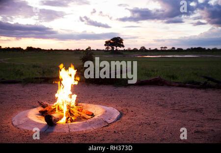 Campfire at dusk - Stock Image