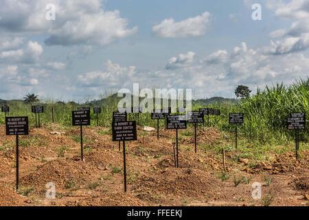 Ebola graveyard, Kenema, Sierra Leone. - Stock Image