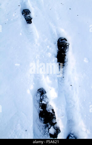 Several footprints in the snow - Stock Image