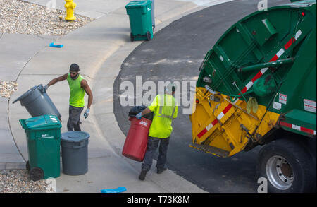 Two Waste Management workers empty green and gray plastic trash containers in a residential area, Castle Rock Colorado US. Photo taken in April. - Stock Image
