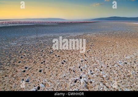 Lake shore with animal tracks in the sand leading to Lake Nakuru. Kenya. - Stock Image