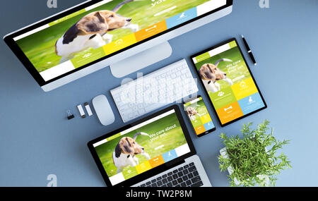 blue devices top view pet website 3d rendering. - Stock Image
