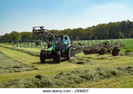 Tractor equipped with Claas Liner 2900 double rotor hay rake and Stoll front loader harvests a field in northern - Stock Image