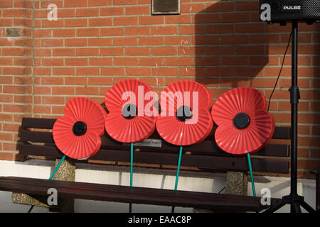 Giant remembrance  poppies on a bench - Stock Image