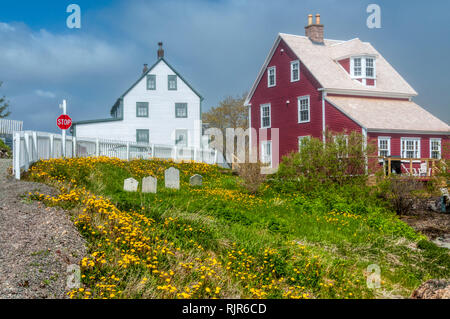 Colourful weatherboarded houses in Trinity, Newfoundland - Stock Image