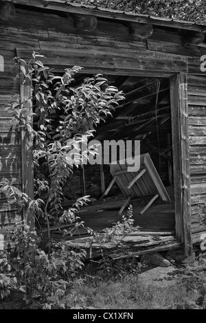 Abandoned boat house with old table in doorway, Vermont - Stock Image