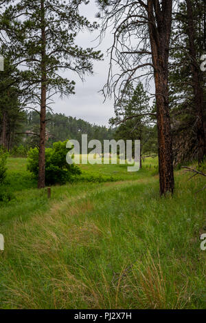 Trail Bends Through Grass Toward Wide Canyon - Stock Image