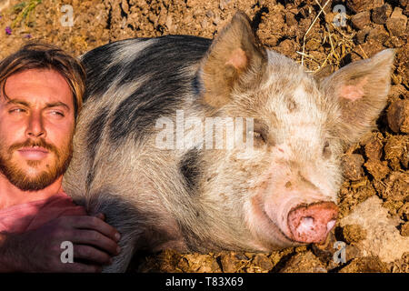 Funny portrait with attractive man with best friend big pig sleeping on the ground in nature rural country side outdoor - Stock Image