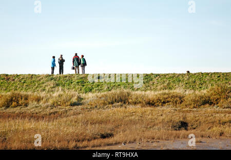 Four walkers on the Norfolk Coast Path on the flood bank in North Norfolk at Thornham, Norfolk, England, United Kingdom, Europe. - Stock Image