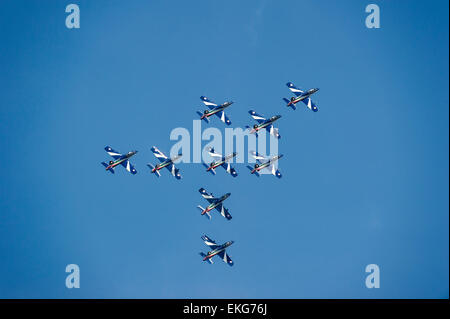 Italian Air Force Frecce Tricolori Display Team RIAT 2014 - Aermacchi AT-339A aircraft - Stock Image
