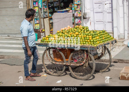 A man checking a lemon on sale on a wheeled cart, New Delhi, India - Stock Image
