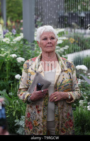Dame Judi Dench at the RHS Chelsea Flower Show at the Royal Hospital Chelsea, London. - Stock Image