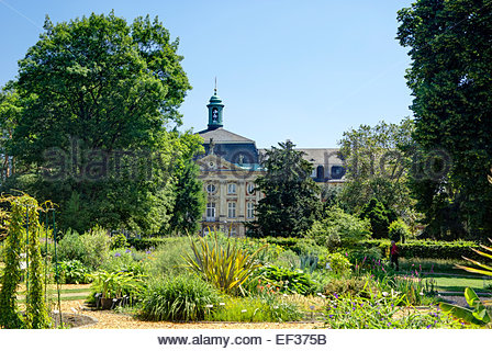 A visitor tours the botanical garden of Westphalian Wilhelm University of Münster, Germany. - Stock Image