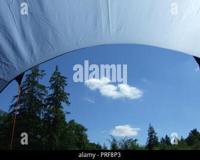 View of trees and a blue sky with clouds, from a tent in the forest of Dean - Stock Image