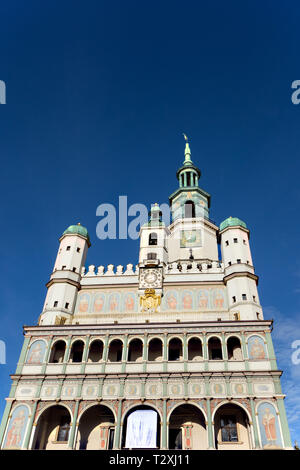 The town hall and clocktower in the old market square in the Polish city of Poznan Poland against blue sky skies - Stock Image
