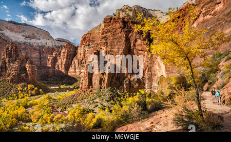Zion Canyon in Big Bend area, The Organ, Weeping Rock, Cathedral Mountain, hikers at Hidden Canyon Trail, late October, - Stock Image