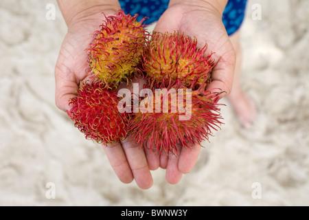 A Filipina holds rambutan fruit on Boracay Island, Philippines. - Stock Image