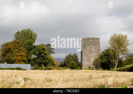 Poulakerry Tower House is lokated on the bank of River Suir in Kilsheelan,Co.Tipperary,Ireland. - Stock Image